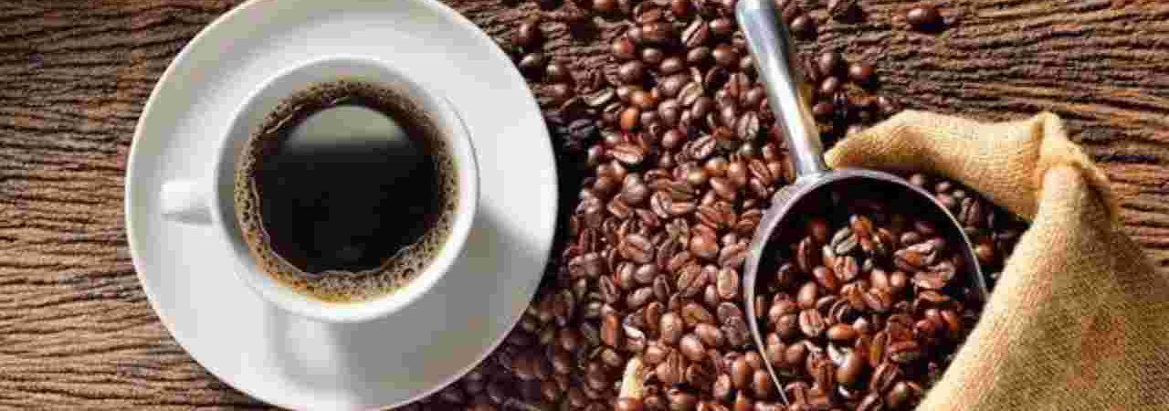 Coffee Capsules Guide to Brew Rich Espresso
